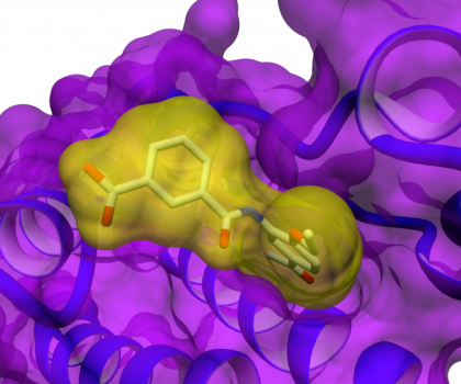 Taros computational chemistry expertise encompasses the whole spectrum of computer-aided drug design, from virtual screening to adaptive SAR analysis as well as molecular modelling to statistical forecasting.