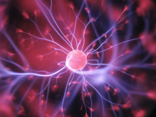 neuroscience within drug discovery
